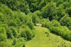 木房子在一块沼地的森林里山的 库存图片