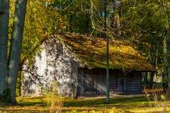 木房子在公园 库存照片