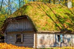 木房子在公园 免版税库存图片