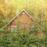 木房子在森林里 免版税库存照片