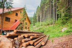 木房子在pinetree森林里 库存图片