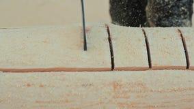 木房子的木匠运作的锯锯切日志 加拿大角度石工 加拿大样式 股票视频