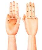 木手显示三个手指 库存照片