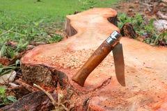 木把柄刀子在树桩黏附了 库存图片