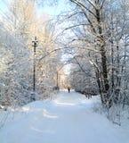 木报道的神仙的森林房子雪传说的冬天 免版税图库摄影