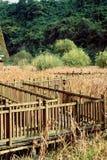 木支架在秋天 库存图片