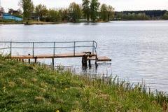 木放置在河在岸 免版税图库摄影