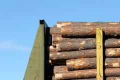 木料培训 免版税库存照片
