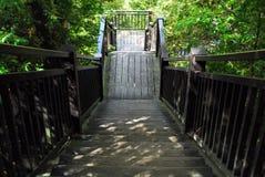 木断开台阶和的平台 库存照片