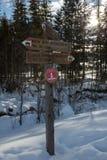 木方向道路签到积雪的山行迹 免版税库存照片