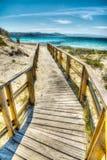 木木板走道在撒丁岛 免版税库存图片
