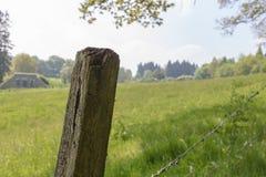 木杆站立在一个草甸旁边的在埃菲尔山,一德国山地 图库摄影