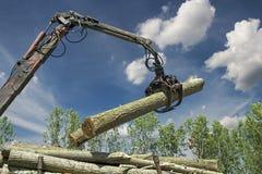 木材产业-起重机举的木材 图库摄影