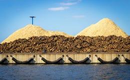 木材准备好发货 免版税库存照片