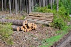 木材准备好运输,南波希米亚 免版税库存图片