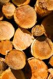 木材木日志木材加工设备河沿哥伦比亚河 库存照片