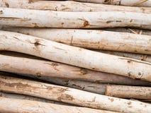 木材木头 图库摄影