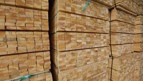 木材材料一个大仓库,整洁地被折叠的木材在锯木厂仓库里,木头仓库  股票视频