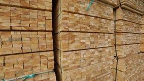 木材材料一个大仓库,整洁地被折叠的木材在锯木厂仓库里,木头仓库  股票录像