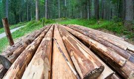 木材,白云岩 图库摄影