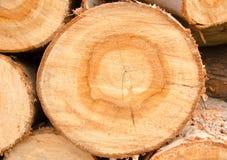 木材 免版税库存照片