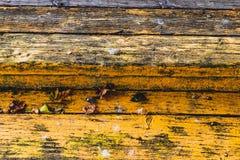 木板墙壁纹理样式 免版税库存图片