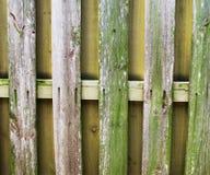 木板岩篱芭 库存图片