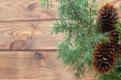 木板条分支树锥体新年明信片背景 免版税库存照片