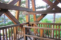 木板条的现代建筑建筑 大厦在公园 免版税库存图片