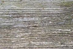 木板条的纹理 库存图片
