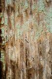 木板条纹理背景 r 免版税库存照片