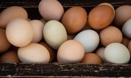 木板箱有机种田的新鲜的鸡蛋 免版税库存照片