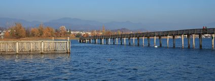 木板走道、蓝色湖Obersee和金黄树 在R的秋天场面 库存图片