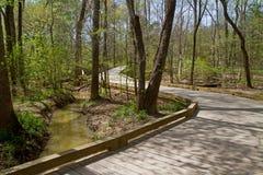木板走道在春天的跨过一片沼泽地 图库摄影
