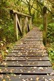 木板走道桥梁纵向 免版税库存图片