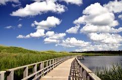 木板走道沼泽海边 库存照片