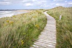 木板走道沿海路径。 图库摄影