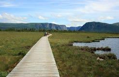 木板走道西部的溪池塘 库存照片