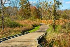 木板走道足迹在秋天草甸 免版税图库摄影
