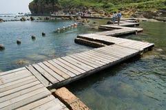 木板走道迂回海滨 免版税库存照片