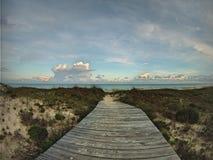 木板走道通过对海滩的沙丘 免版税库存照片