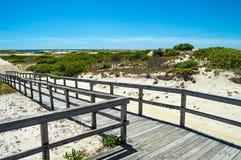 木板走道通过沙丘 库存图片