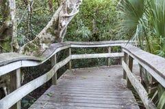 木板走道通过沼泽地沼泽地  库存照片