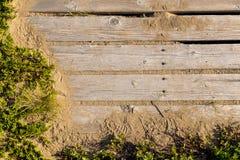 木板走道长满与杂草 免版税图库摄影