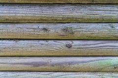 木柱 库存照片