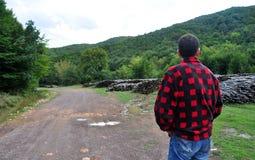 木柴伐木工人 库存照片