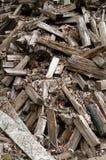 木柴杉木分散的woodpile 库存照片