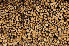 木柴被堆积的冬天 库存照片