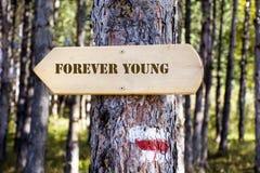 木标志板在森林里 有永远年轻人标志的方向委员会 免版税库存图片