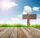 木标志,新与蓝天的春天绿草 库存照片